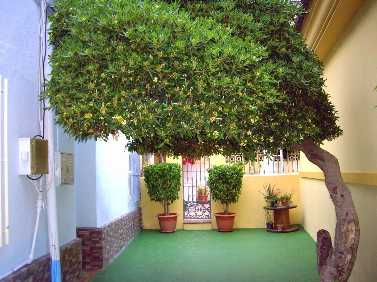 Pisos en alquiler en teatinos malaga for Pisos alquiler ciudad jardin malaga