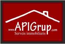www.apigrup.com